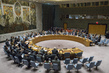 Security Council Urges Signature, Ratification of Nuclear-Test-Ban Treaty 1.0