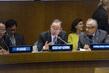 Meeting of Partnership Group of Secretary-General on Myanmar 0.015099359