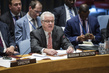 Russian Representative Addresses Security Council on Syria