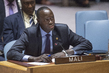 Security Council Considers Situation in Mali 1.1984984