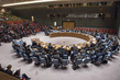 Security Council Fails to Adopt Two Draft Resolutions on Syria 4.161219