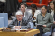 Security Council Considers Situation in Central African Republic 4.161219