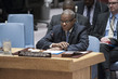 Security Council Considers Situation Concerning Democratic Republic of Congo 4.1603513