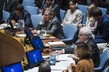 Security Council Meets on Middle East Including Palestinian Question 1.0