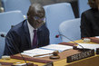Security Council Meeting on Situation in Mali 1.1916589