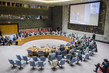 Security Council Meets on Situation in Middle East 4.1478596
