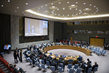 Security Council Meets on Situation in Middle East 4.145473