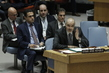 Security Council Meets on Situation in Middle East (Syria) 4.145878