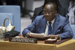Security Council Considers Situation in Central Africa