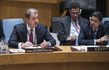 Security Council Considers Work of International Tribunals