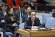 Security Council Considers Human Rights Situation in DPRK