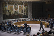 Security Council Holds Emergency Meeting on Aleppo, Syria 0.07797813