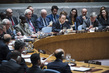 Security Council Meets on Situation in Syria 0.10914665