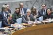 Security Council Debates Prevention of Use of WMDs by Non-State Actors 0.5067669