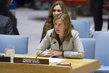 Security Council Debates Prevention of Use of WMDs by Non-State Actors 0.57356876