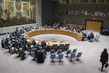 Security Council Considers Situation in Sudan and South Sudan 0.16759306