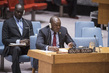 Security Council Considers Situation in Sudan and South Sudan 0.2065766