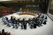 Security Council Renews Decision on Aid Delivery to Syria 1.0643489