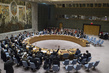 Security Council Fails to Impose Arms Embargo on South Sudan 0.046088625