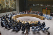Security Council Fails to Impose Arms Embargo on South Sudan 0.08887964