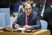 Security Council Considers Situation in Syria 1.0062698