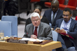 Security Council Considers Situation in Democratic Republic of Congo 0.058733426