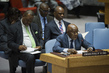 Security Council Considers Situation in Democratic Republic of Congo 0.059385523