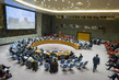Security Council Considers Situation in Lake Chad Basin Region of Africa 4.127856