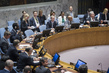Security Council Considers Situation in Lake Chad Basin Region of Africa 0.050901882