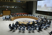 Security Council Considers Situation in Lake Chad Basin Region of Africa 1.0