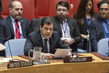 Security Council Considers Developments in West Africa and Sahel 1.0