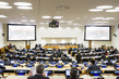 Meeting of UN Forum on Forests Working Group 4.6036453