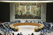 Security Council Considers Peace Consolidation in West Africa 4.128005