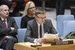 Security Council Debates Protection of Critical Infrastructure Against Terrorist Attacks 0.05862733