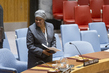 Security Council Considers Situation in Central African Republic 1.0