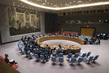 Security Council Considers Situation in Syria 0.008372039