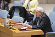 Security Council Considers Situation in Syria 0.006697631