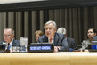 General Assembly Briefing on Implementing UN Counter-Terrorism Strategy