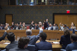 Security Council Extends Yemen Sanctions Regime 4.118503
