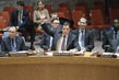Draft Security Council Resolution on Syria Sanctions Vetoed 0.08150826