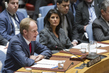 Draft Security Council Resolution on Syria Sanctions Vetoed 0.75342554
