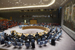 Security Council Briefed by Chair of Non-proliferation Committee 1.357091