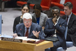 Security Council Considers Situation in Central African Republic 0.058762535