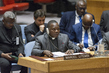 Security Council Considers Situation Concerning Democratic Republic of the Congo 1.0