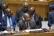 Security Council Considers Situation Concerning Democratic Republic of Congo 4.1160803