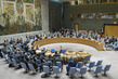 Security Council Extends Mandate of DPRK Sanctions Panel