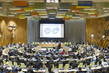 General Assembly Discusses Climate Change, Sustainable Development Agenda 5.2781277
