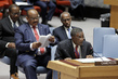 Security Council Adopts Resolution on Terrorism in Lake Chad Basin Region 0.8091333