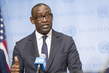 Foreign Minister of Mali Briefs Press 1.1923604
