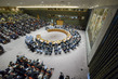 Security Council Holds Emergency Meeting on Syria 10.404681